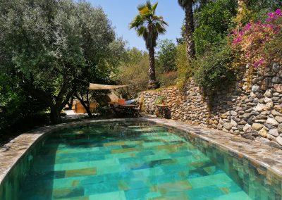 Vista de piscina primer plano de agua con fondo de palmera