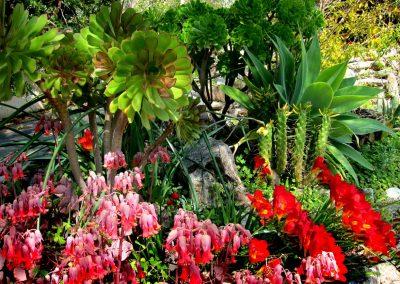 Jardín detalles